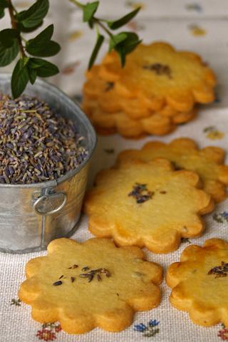 lavender_sable.jpg