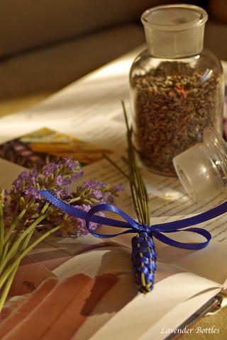 lavenderbottles_1.jpg
