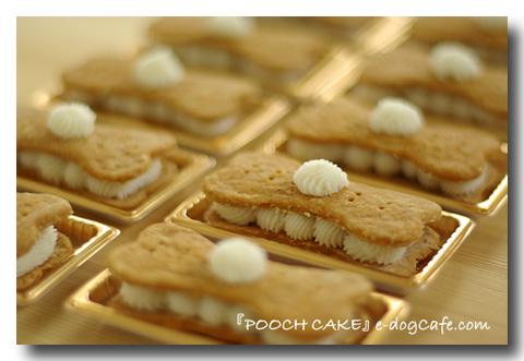 pooch_cake_1.jpg