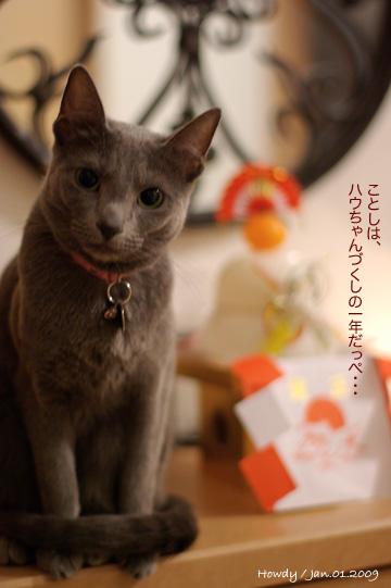 01.01.2009_1.jpg