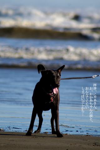 barbie_sea_02.jpg