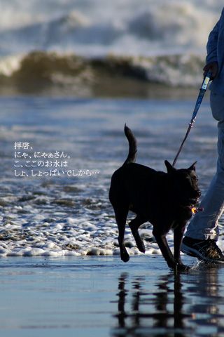 barbie_sea_02.20_3.jpg