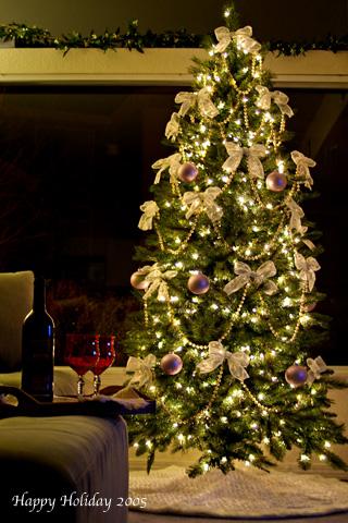 christmas_2005_2.jpg