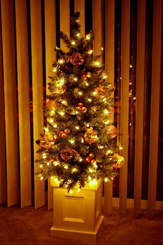 christmas_2005_den1.jpg