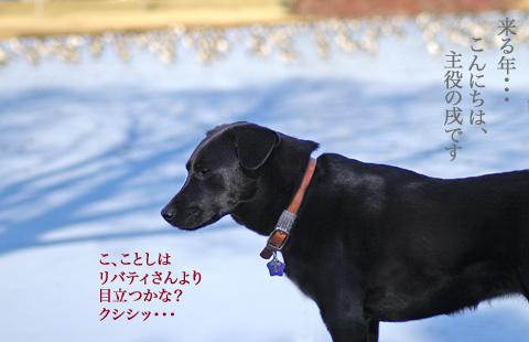 kurutoshi.jpg