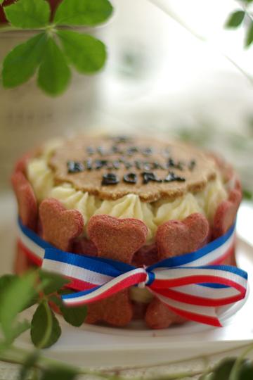 pink_birthdaycake_2.jpg