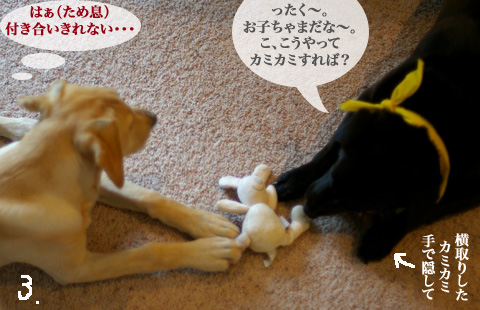 sawa_bar_09.21_3.jpg