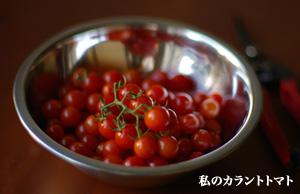 tomato_09.18.06.jpg